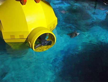 Submarine Darkride